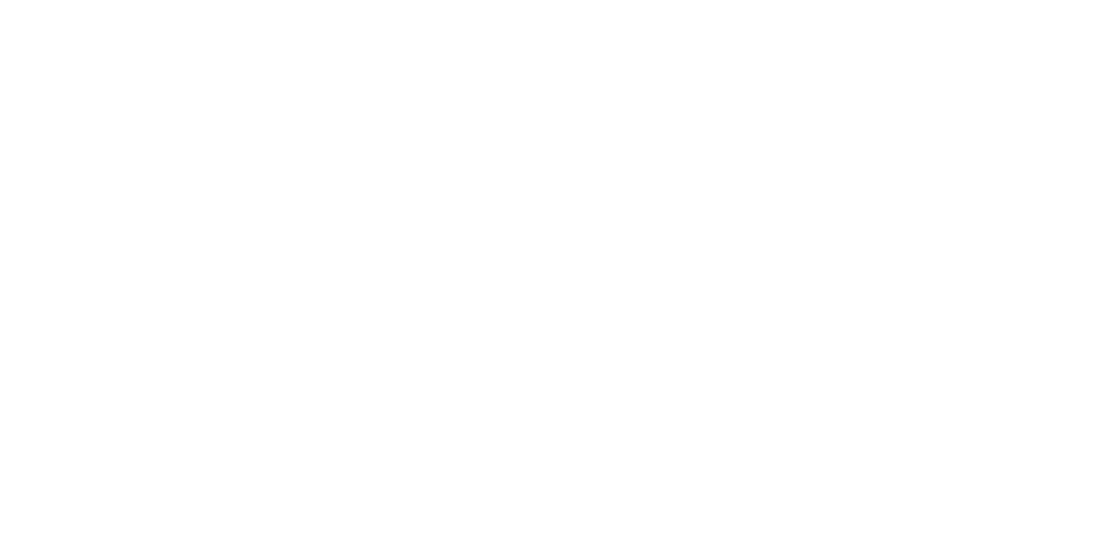 logo sito suntzu